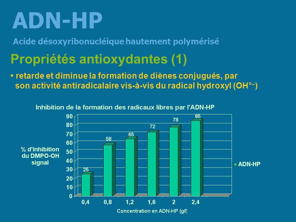 conduit en capturant OH° – à la formation dun produit stable le 8-hydroxydeoxyguanosine (8-OHDG) évitant la formation dun nouveau radical libre terminant le processus de peroxydation => lADN-HP protège la cellule vis-à-vis des agressions oxydatives extracellulaires Propriétés antioxydantes (2) Acide désoxyribonucléique hautement polymérisé ADN-HP