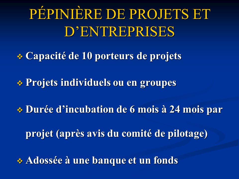 Capacité de 10 porteurs de projets Capacité de 10 porteurs de projets Projets individuels ou en groupes Projets individuels ou en groupes Durée dincub