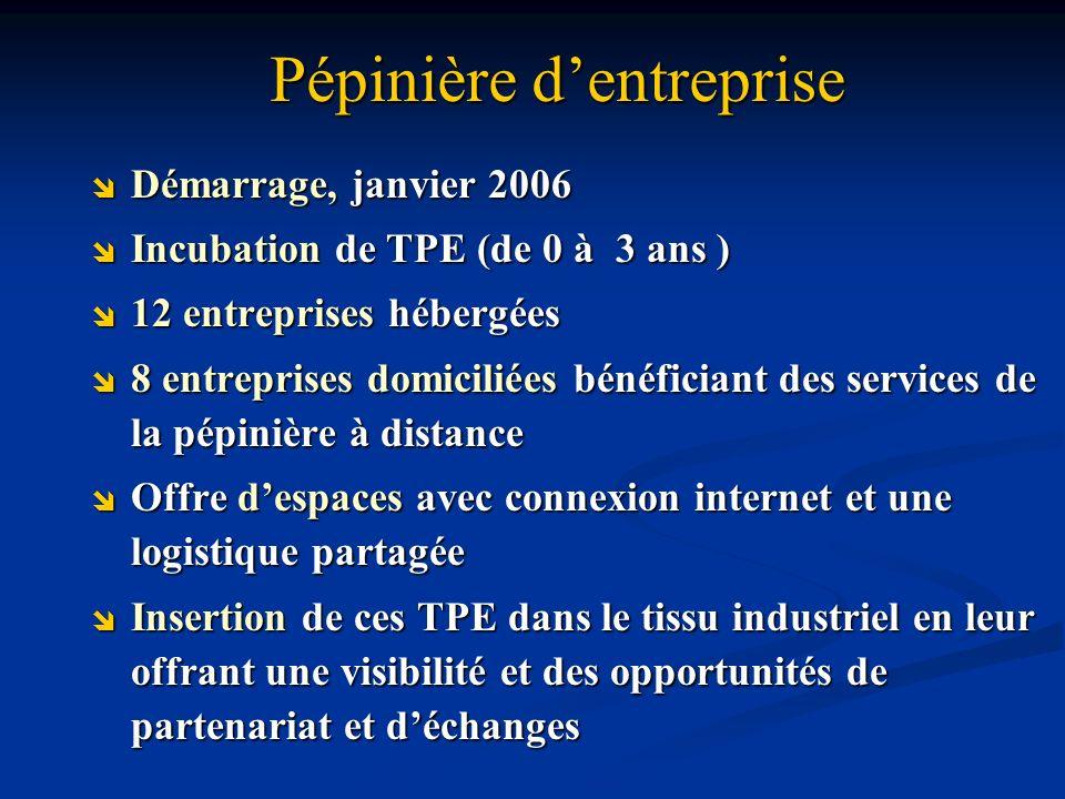 Pépinière dentreprise Démarrage, janvier 2006 Démarrage, janvier 2006 Incubation de TPE (de 0 à 3 ans ) Incubation de TPE (de 0 à 3 ans ) 12 entrepris