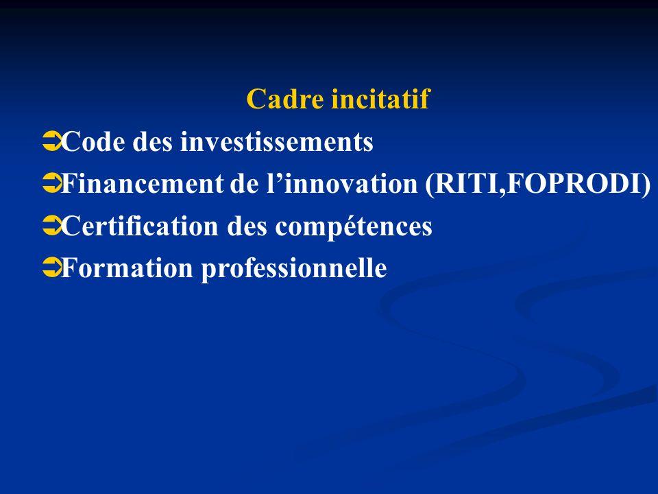 Cadre incitatif Code des investissements Financement de linnovation (RITI,FOPRODI) Certification des compétences Formation professionnelle