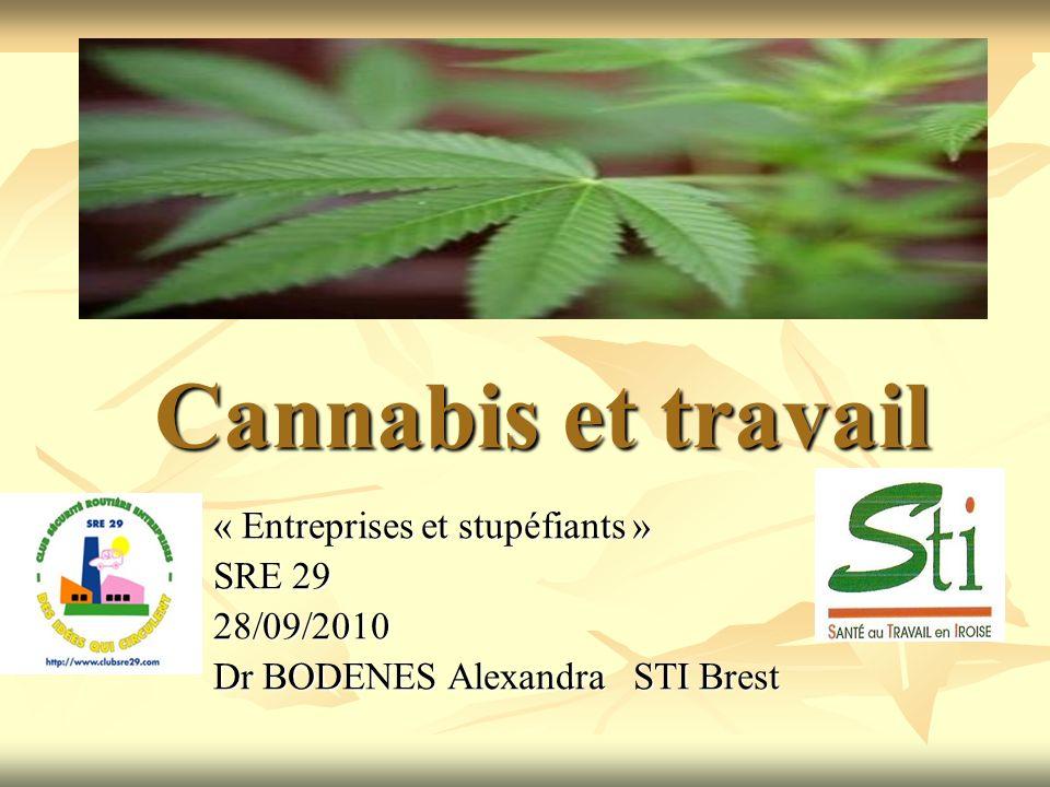 Cannabis et travail « Entreprises et stupéfiants » SRE 29 28/09/2010 Dr BODENES Alexandra STI Brest