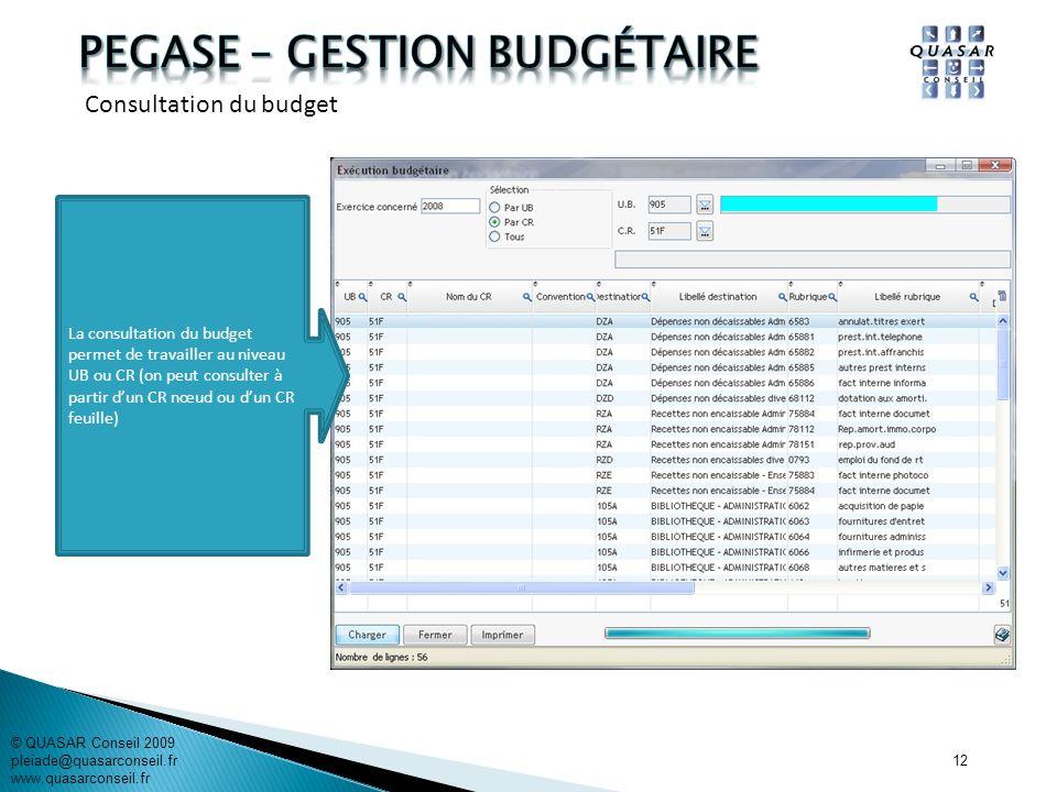 12 La consultation du budget permet de travailler au niveau UB ou CR (on peut consulter à partir dun CR nœud ou dun CR feuille) © QUASAR Conseil 2009