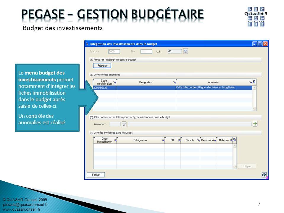 7 © QUASAR Conseil 2009 pleiade@quasarconseil.fr www.quasarconseil.fr Le menu budget des investissements permet notamment dintégrer les fiches immobil