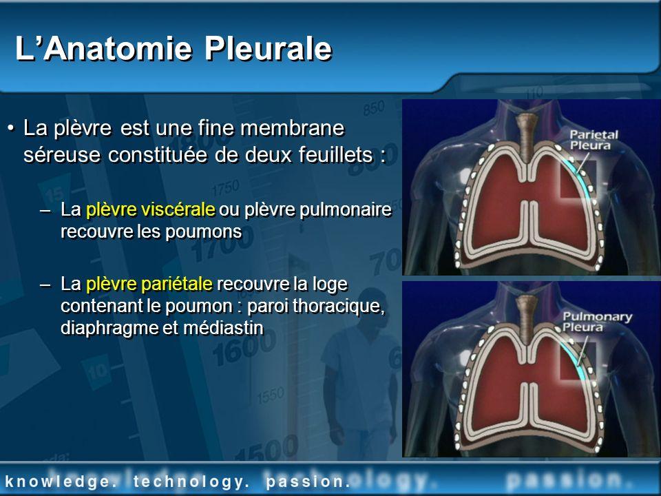 La plèvre est une fine membrane séreuse constituée de deux feuillets : –La plèvre viscérale ou plèvre pulmonaire recouvre les poumons –La plèvre parié