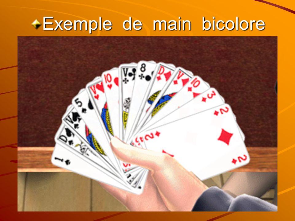 Exemple de main bicolore