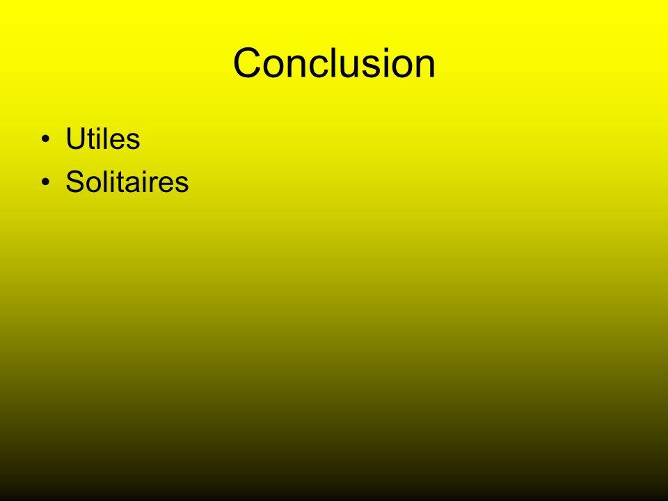 Conclusion Utiles Solitaires