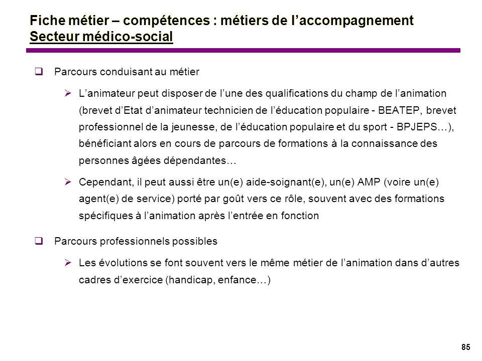 85 Parcours conduisant au métier Lanimateur peut disposer de lune des qualifications du champ de lanimation (brevet dEtat danimateur technicien de léd