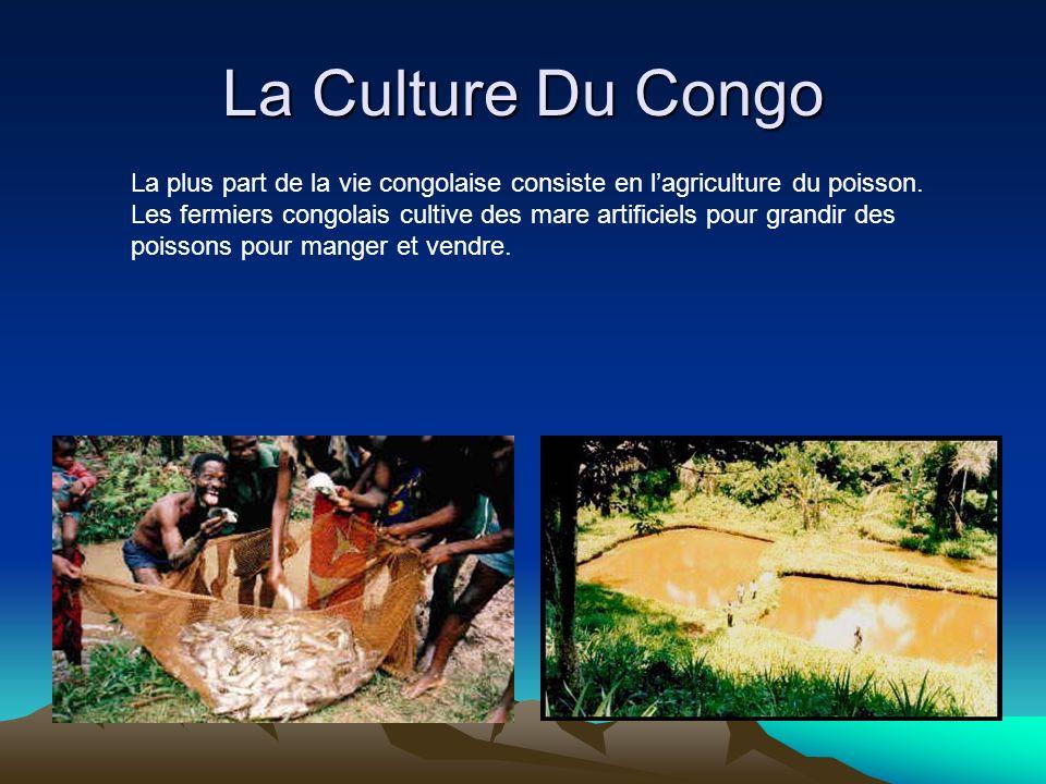 La Culture Du Congo La plus part de la vie congolaise consiste en lagriculture du poisson. Les fermiers congolais cultive des mare artificiels pour gr