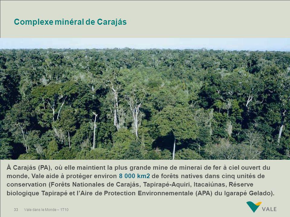 32Vale dans le Monde – 1T10 Réserve naturelle de Vale Dans l'Espírito Santo, l'entreprise maintient la Réserve Naturelle Vale, une région d'environ 21