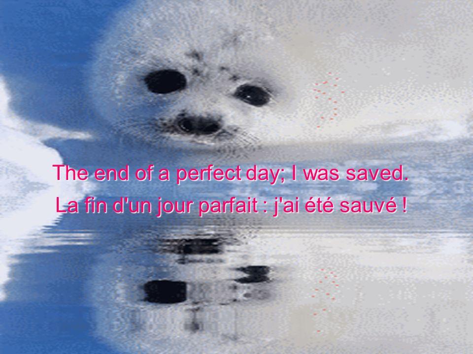 The end of a perfect day; I was saved. La fin d un jour parfait : j ai été sauvé !