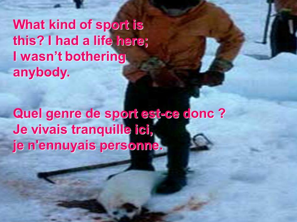IS HE A SPORTSMAN SPORTSMAN Est-ce là un sportif