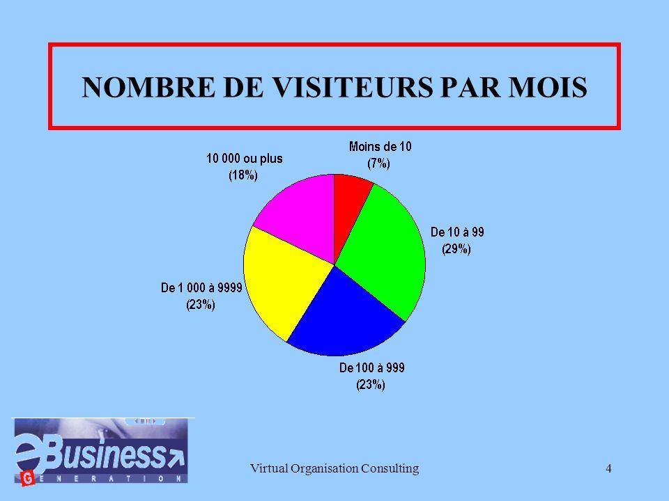 Virtual Organisation Consulting4 NOMBRE DE VISITEURS PAR MOIS