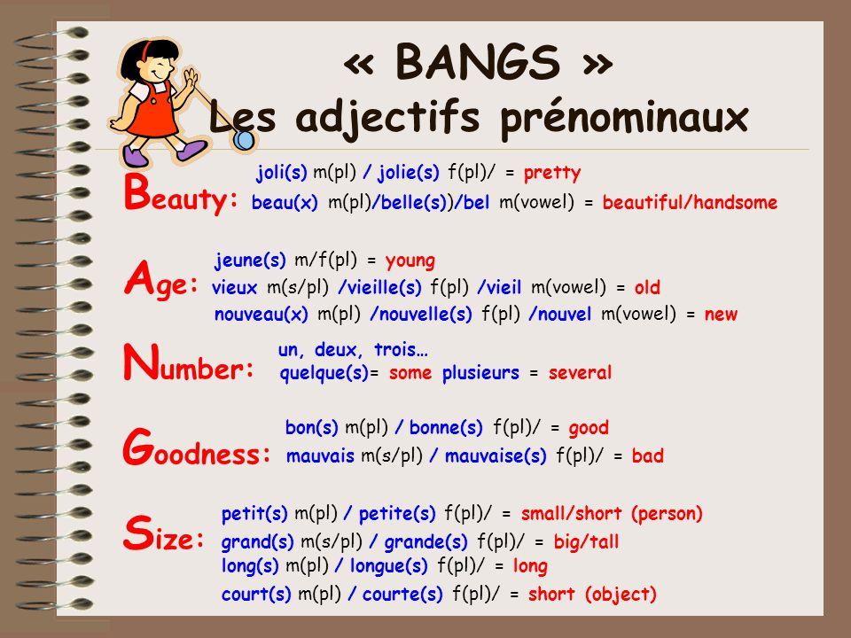 B eauty: beau(x) m(pl)/belle(s))/bel m(vowel) = beautiful/handsome A ge: vieux m(s/pl) /vieille(s) f(pl) /vieil m(vowel) = old N umber: quelque(s)= so