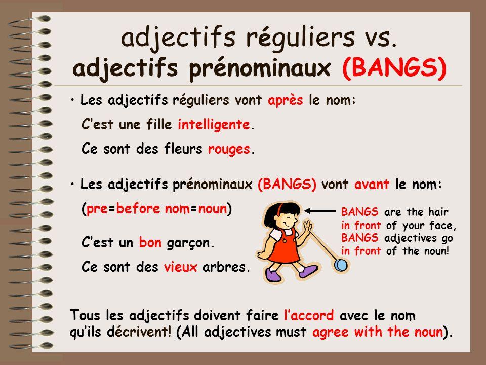 adjectifs r é guliers vs. adjectifs prénominaux (BANGS) Les adjectifs réguliers vont après le nom: Cest une fille intelligente. Ce sont des fleurs rou