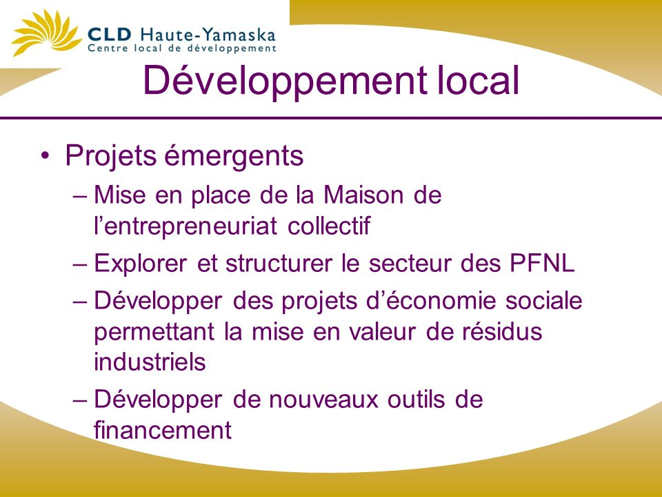 Développement local Projets émergents –Mise en place de la Maison de lentrepreneuriat collectif –Explorer et structurer le secteur des PFNL –Développe