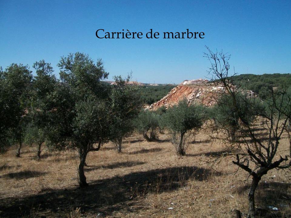 02/12/2011 Carrière de marbre