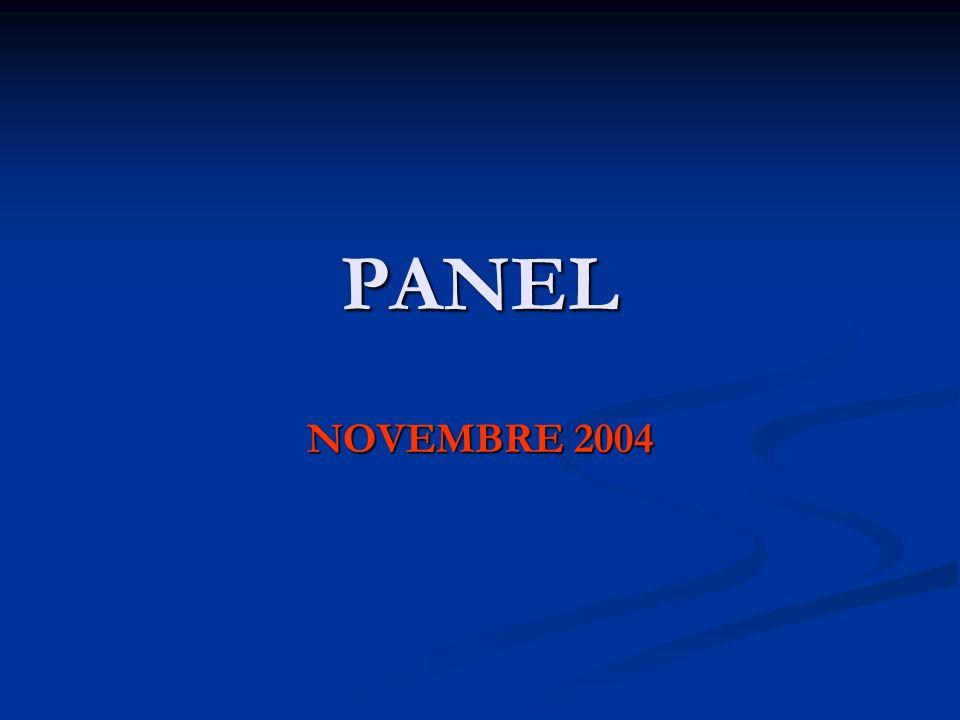 PANEL NOVEMBRE 2004