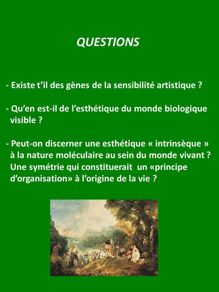 QUESTIONS - Existe til des gènes de la sensibilité artistique ? - Quen est-il de lesthétique du monde biologique visible ? - Peut-on discerner une est