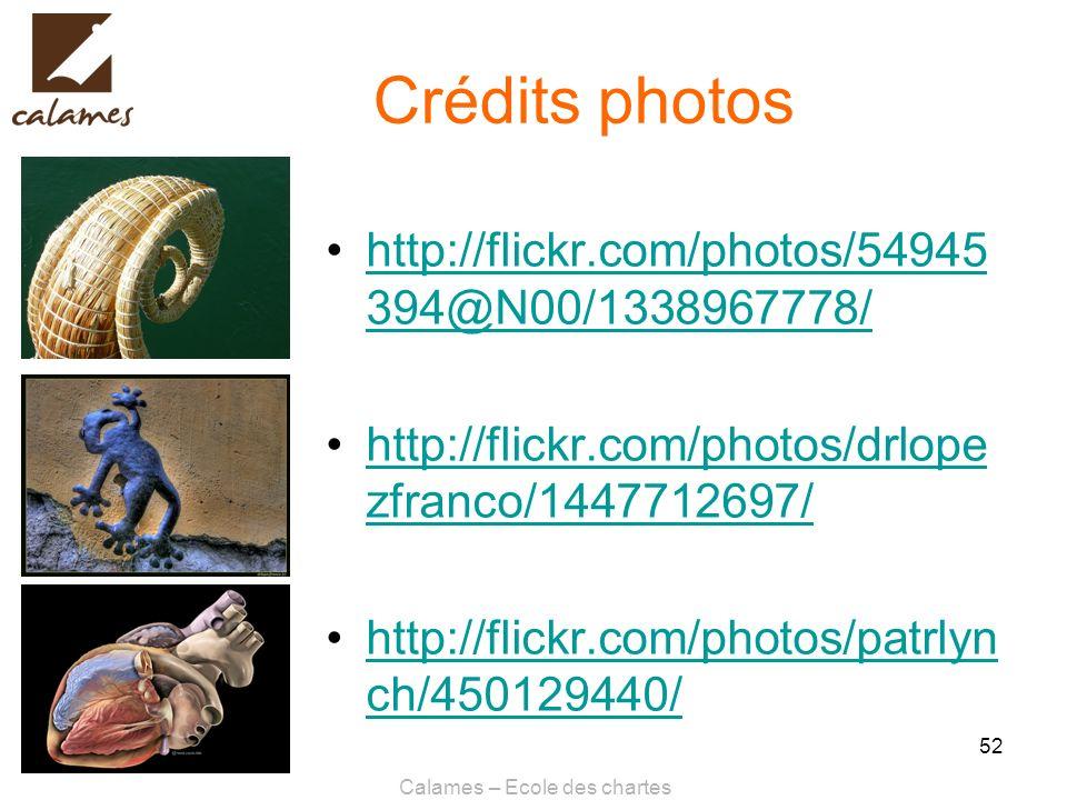 Calames – Ecole des chartes 52 Crédits photos http://flickr.com/photos/54945 394@N00/1338967778/http://flickr.com/photos/54945 394@N00/1338967778/ htt