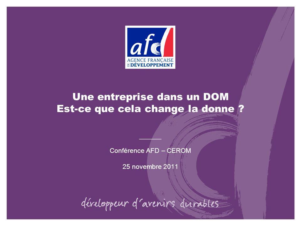 Une entreprise dans un DOM Est-ce que cela change la donne ? Conférence AFD – CEROM 25 novembre 2011