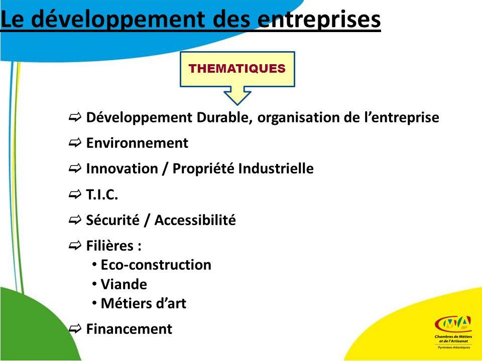 Le développement des entreprises THEMATIQUES Développement Durable, organisation de lentreprise Environnement Innovation / Propriété Industrielle T.I.