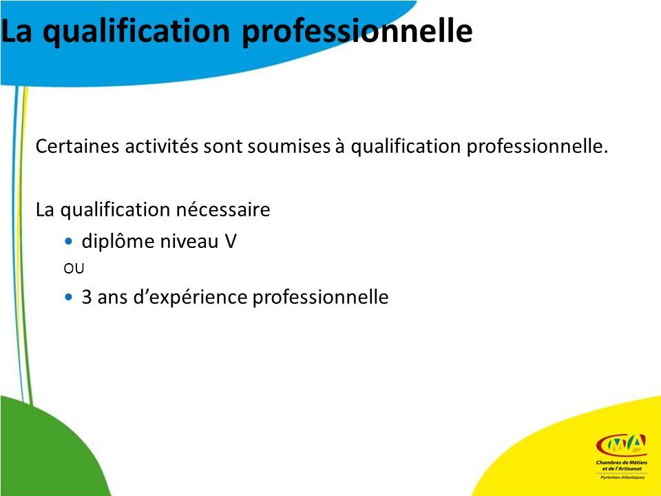 La qualification professionnelle Certaines activités sont soumises à qualification professionnelle. La qualification nécessaire diplôme niveau V OU 3