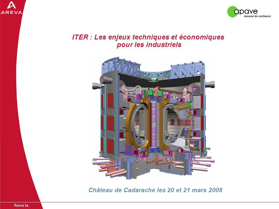 Areva ta ITER : Les enjeux techniques et économiques pour les industriels Château de Cadarache les 20 et 21 mars 2008