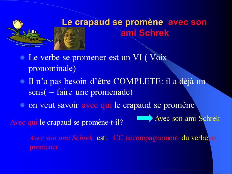 Malgré sa laideur, le crapaud aime la princesse Le verbe aimer est un VTD Mais ici, il na pas besoin dêtre COMPLETE: il a déjà un sens( = aimer la pri