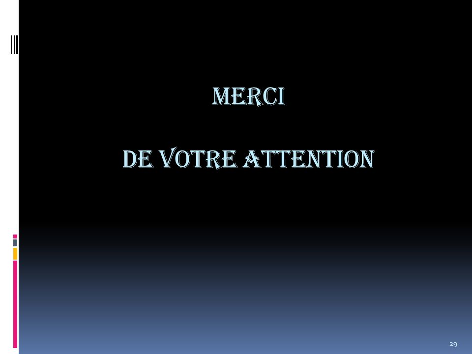 Merci de votre attention 29