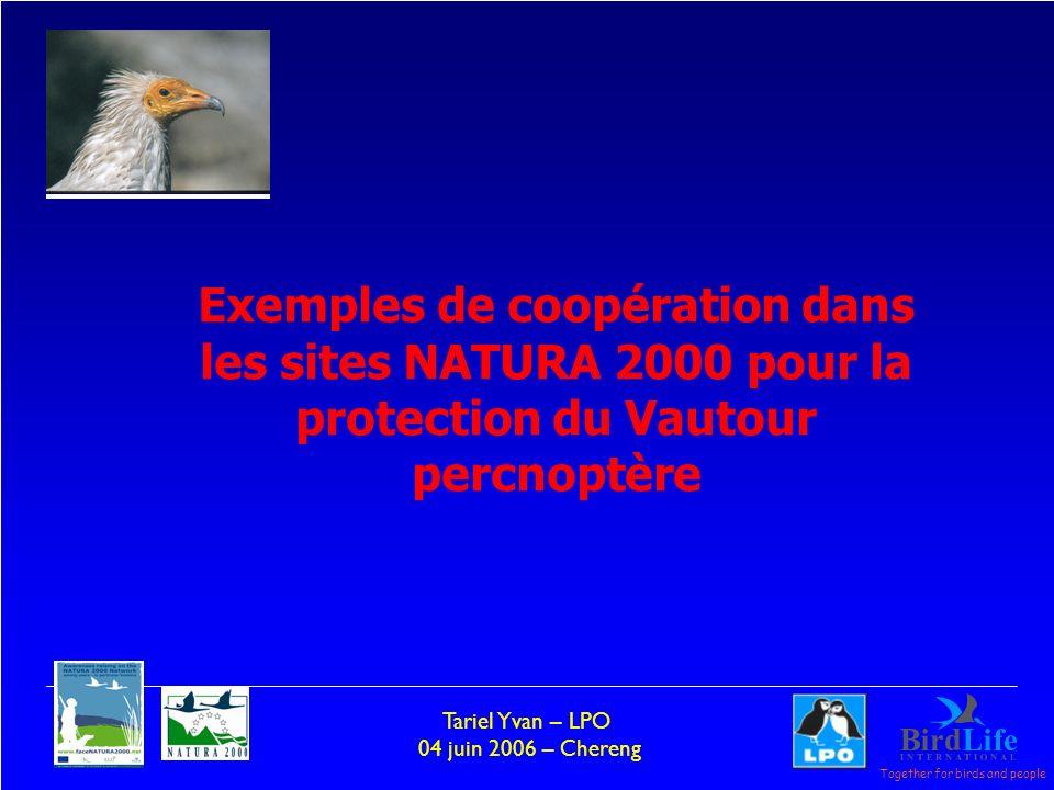 Together for birds and people Tariel Yvan – LPO 04 juin 2006 – Chereng - Par exemple pour les Docob un partenariat et mis en place avec LONF pour travailler conjointement et définir ainsi une stratégie concerté pour chacun des sites et obtenir plus de résultats que chacun séparément.
