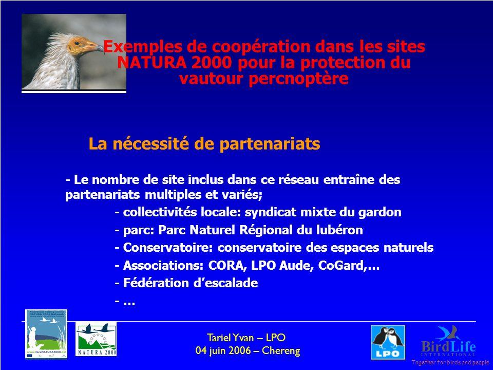 Together for birds and people Tariel Yvan – LPO 04 juin 2006 – Chereng - Le nombre de site inclus dans ce réseau entraîne des partenariats multiples et variés; - collectivités locale: syndicat mixte du gardon - parc: Parc Naturel Régional du lubéron - Conservatoire: conservatoire des espaces naturels - Associations: CORA, LPO Aude, CoGard,… - Fédération descalade - … La nécessité de partenariats Exemples de coopération dans les sites NATURA 2000 pour la protection du vautour percnoptère