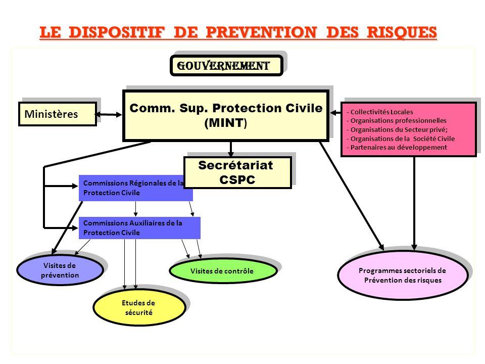 DESCRIPTION SOMMAIRE DU PAPNGCN Appuyer le GDS à la définition dun programme national et dun cadre institutionnel approprié, à la préparation et à la réponse face aux risques majeurs de catastrophes.
