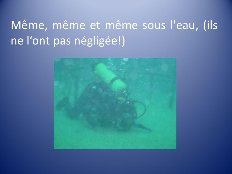 Même, même et même sous l'eau, (ils ne lont pas négligée!)