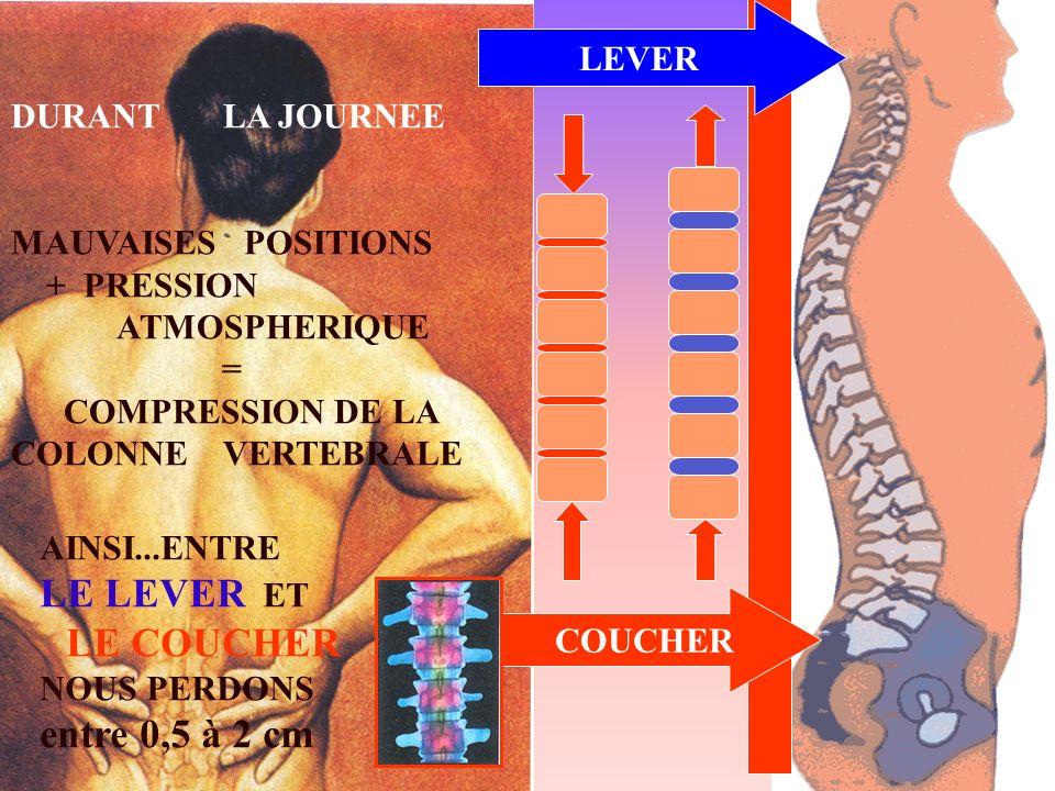 LEVER COUCHER AINSI...ENTRE LE LEVER ET LE COUCHER NOUS PERDONS entre 0,5 à 2 cm DURANT LA JOURNEE MAUVAISES POSITIONS + PRESSION ATMOSPHERIQUE = COMP