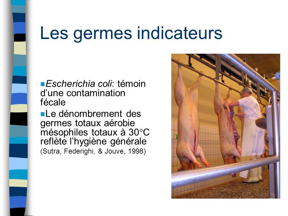Les germes indicateurs n Escherichia coli: témoin dune contamination fécale n Le dénombrement des germes totaux aérobie mésophiles totaux à 30°C reflè