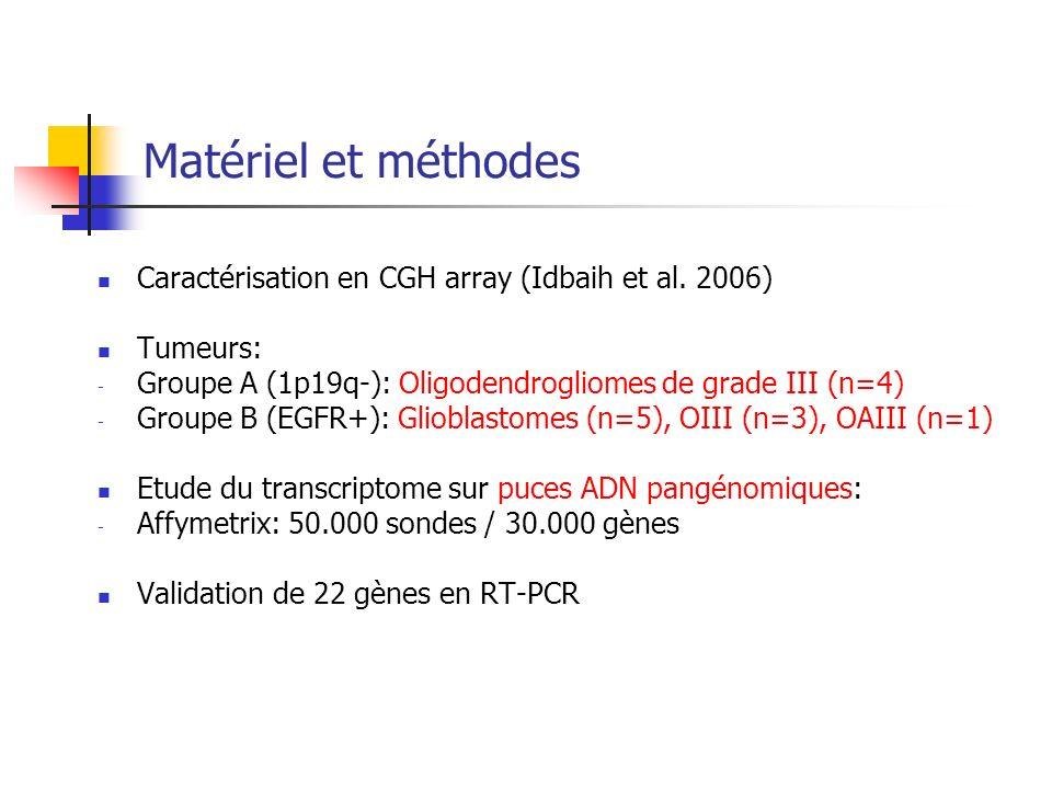 Matériel et méthodes Caractérisation en CGH array (Idbaih et al. 2006) Tumeurs: - Groupe A (1p19q-): Oligodendrogliomes de grade III (n=4) - Groupe B