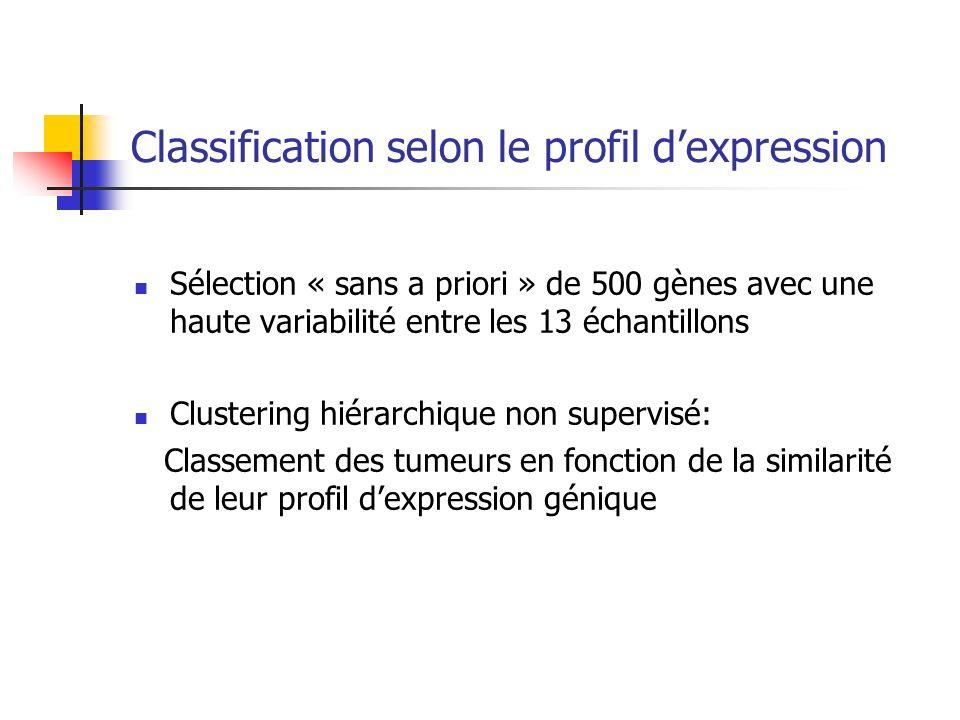Classification selon le profil dexpression Sélection « sans a priori » de 500 gènes avec une haute variabilité entre les 13 échantillons Clustering hi