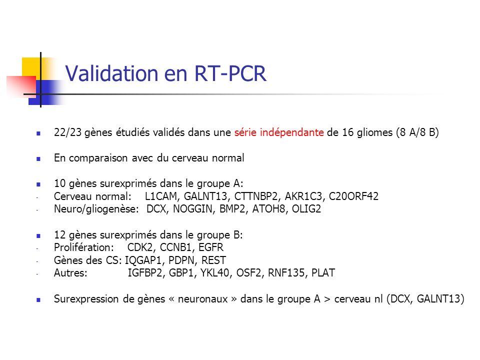 Validation en RT-PCR 22/23 gènes étudiés validés dans une série indépendante de 16 gliomes (8 A/8 B) En comparaison avec du cerveau normal 10 gènes su