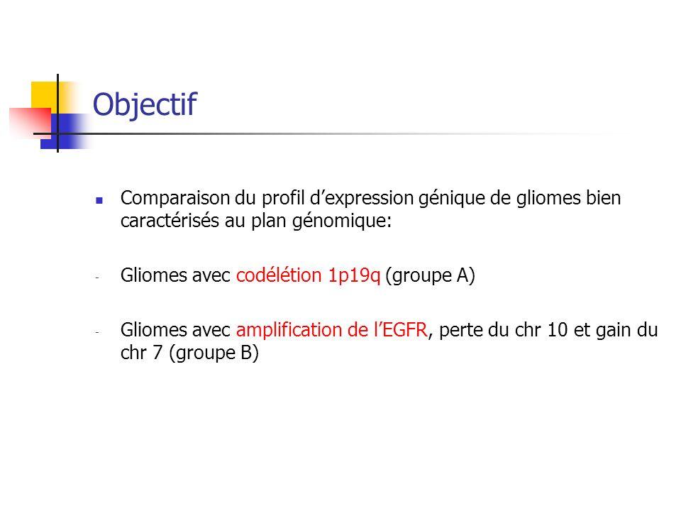 Objectif Comparaison du profil dexpression génique de gliomes bien caractérisés au plan génomique: - Gliomes avec codélétion 1p19q (groupe A) - Gliome