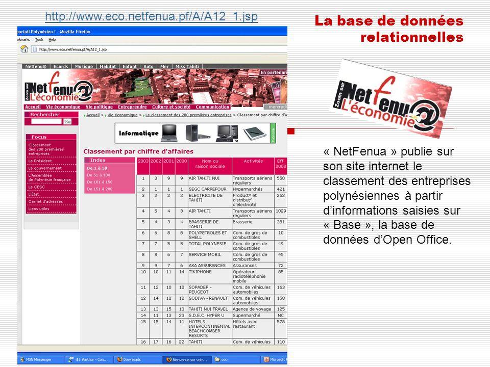 « NetFenua » publie sur son site internet le classement des entreprises polynésiennes à partir dinformations saisies sur « Base », la base de données
