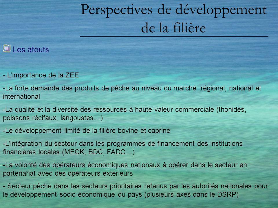 Perspectives de développement de la filière Les atouts - Limportance de la ZEE -La forte demande des produits de pêche au niveau du marché régional, n