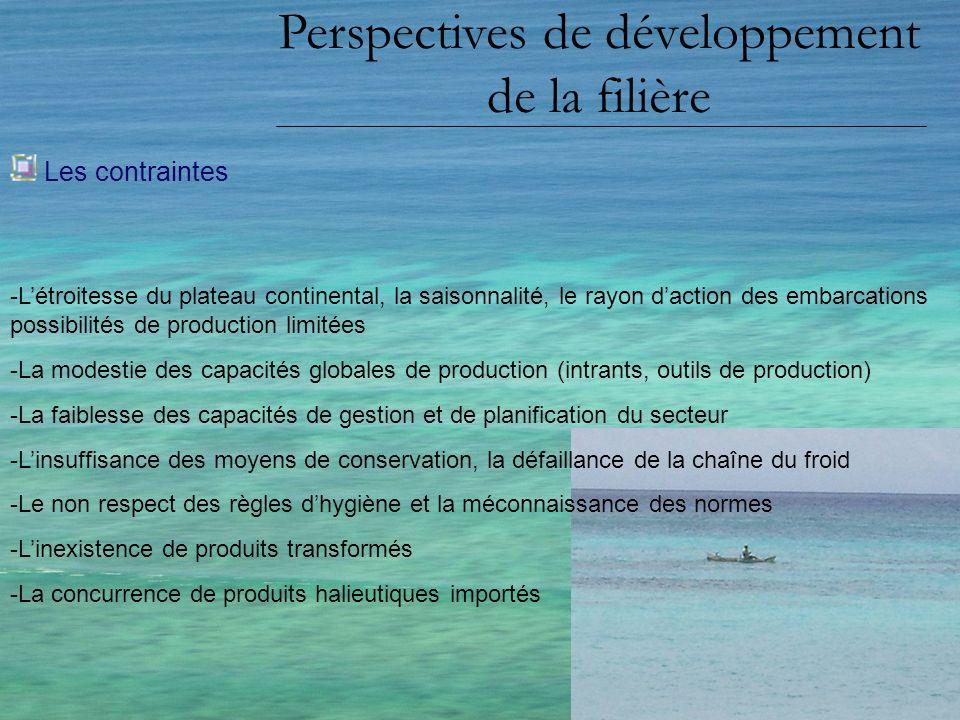 Perspectives de développement de la filière Les contraintes -Létroitesse du plateau continental, la saisonnalité, le rayon daction des embarcations po