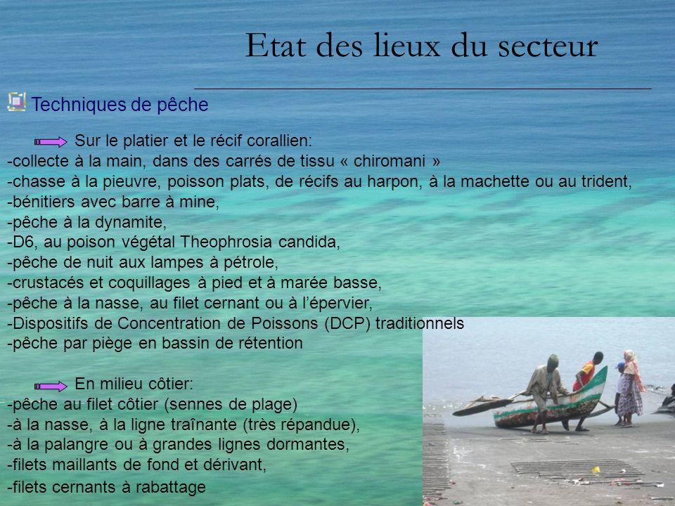 Etat des lieux du secteur Pêcheurs et embarcations La saisonnalité -Grande Comore, meilleure production pendant le kashkazi (novembre à avril) - Mohéli, début du kashkazi -Anjouan, période du kusi Mutsamudu = surproduction, pénurie = Domoni La situation sinverse pendant lépoque de kashkazi 70% dembarcations traditionnelles pirogues monostyles à balanciers (2 à Grande Comore, 1 sur les 2 autres îles) appelées « Ngawa » de 3 à 5 m de long, à la pagaie.