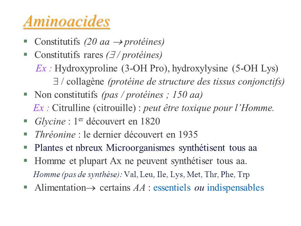 Aminoacides §Constitutifs (20 aa protéines) §Constitutifs rares ( / protéines) Ex : Hydroxyproline (3-OH Pro), hydroxylysine (5-OH Lys) / collagène (p