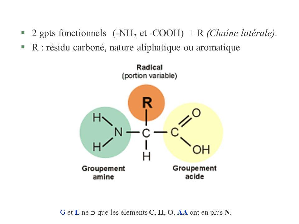 §2 gpts fonctionnels (-NH 2 et -COOH) + R (Chaîne latérale). §R : résidu carboné, nature aliphatique ou aromatique G et L ne que les éléments C, H, O.