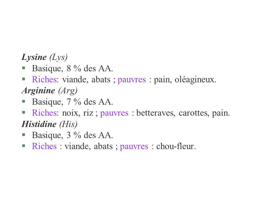 Lysine (Lys) §Basique, 8 % des AA. §Riches: viande, abats ; pauvres : pain, oléagineux. Arginine (Arg) §Basique, 7 % des AA. §Riches: noix, riz ; pauv
