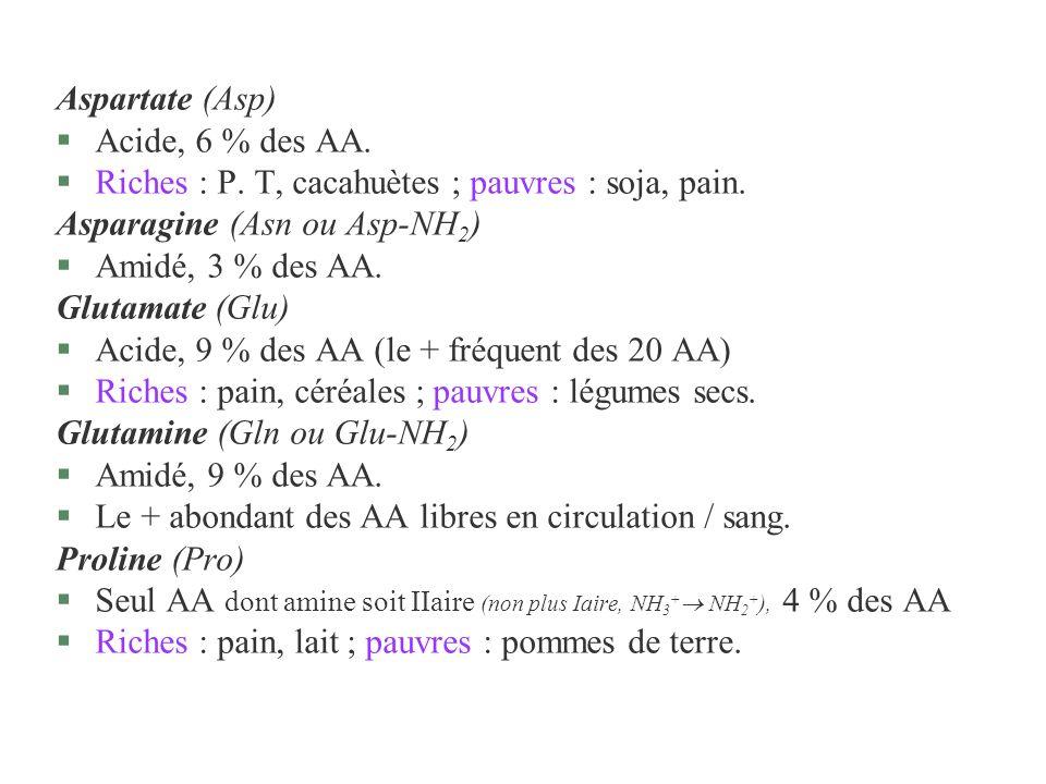 Aspartate (Asp) §Acide, 6 % des AA. §Riches : P. T, cacahuètes ; pauvres : soja, pain. Asparagine (Asn ou Asp-NH 2 ) §Amidé, 3 % des AA. Glutamate (Gl