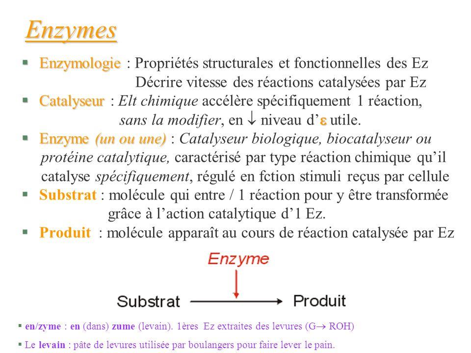 §Enzymologie §Enzymologie : Propriétés structurales et fonctionnelles des Ez Décrire vitesse des réactions catalysées par Ez §Catalyseur §Catalyseur :