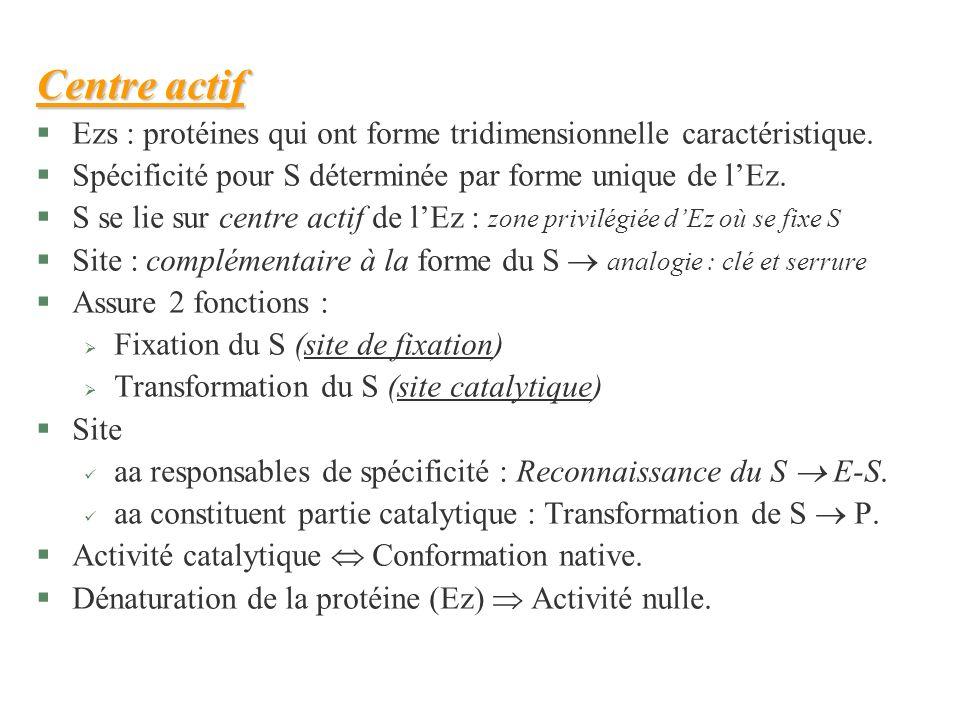 Centre actif §Ezs : protéines qui ont forme tridimensionnelle caractéristique. §Spécificité pour S déterminée par forme unique de lEz. §S se lie sur c