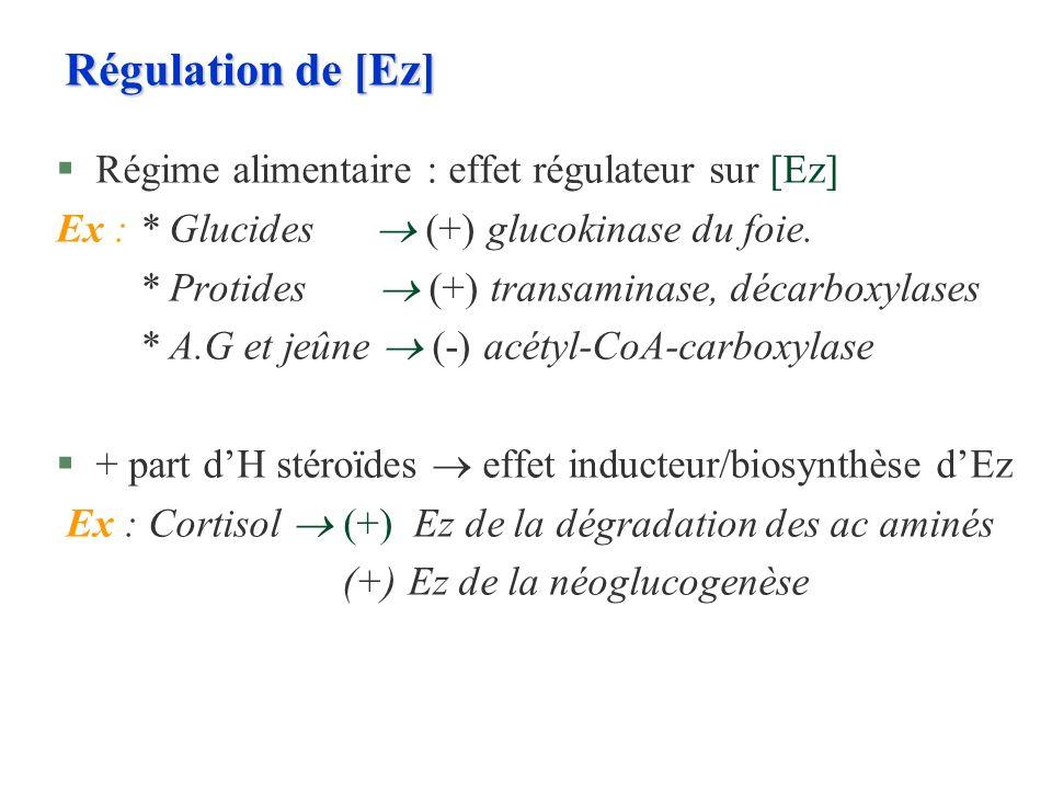 Régulation de [Ez] §Régime alimentaire : effet régulateur sur [Ez] Ex : * Glucides (+) glucokinase du foie. * Protides (+) transaminase, décarboxylase